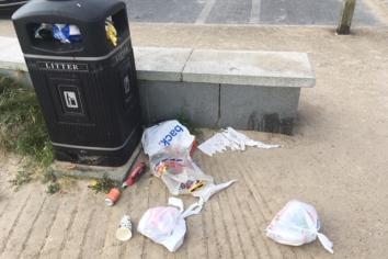 Council should join environmental scheme - McCaw