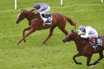The very best on track for Longines Irish Champions Weekend