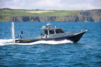 Public warned not to disturb marine wildlife